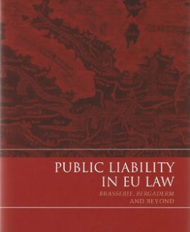 Public Liability in EU Law
