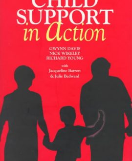 Child Support in Action (Paperback)