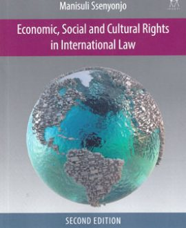 Economic, Social and Cultural Rights in International Law