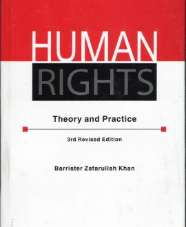 Human Rights Theory and Practice