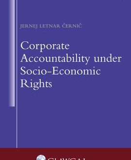 Corporate Accountability under Socio-Economic Rights